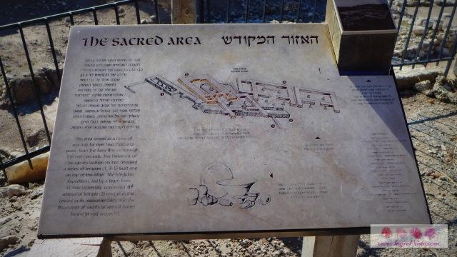 The Sacred Area