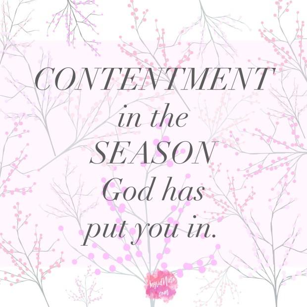 content season